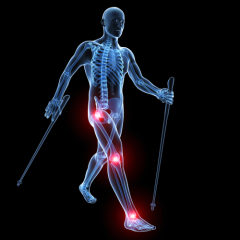 Research benefits - Fibromyalgia, joint injury or replacement recovery