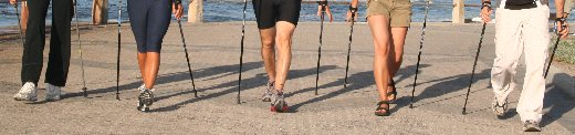 Contact Southpole Nordic Walking South Africa