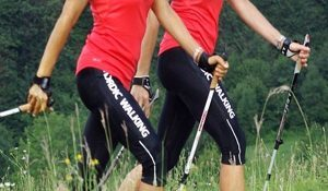 About Southpole Nordic Walking South Africa