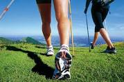 About Nordic Walking