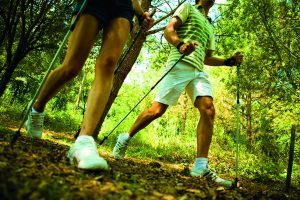 Nordic Walking benefits